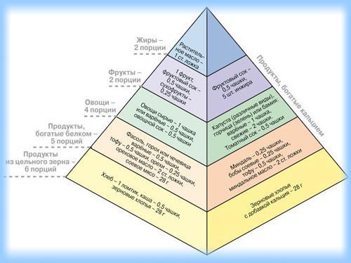 все о вегетерианстве и диетах плюсы и минусы